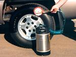 Tire Dressing Application