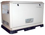 Gasoline Powered Home Standby Generators